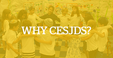 CESJDS Strategic Plan